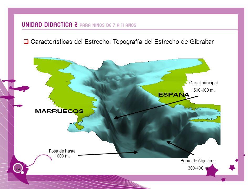 34 Características del Estrecho: Topografía del Estrecho de Gibraltar Fosa de hasta 1000 m. Bahía de Algeciras. 300-400 m. Canal principal :500-600 m.