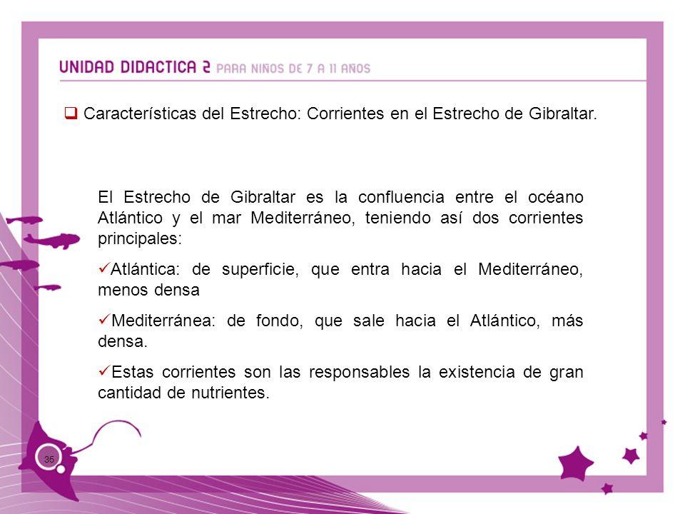 35 Características del Estrecho: Corrientes en el Estrecho de Gibraltar. El Estrecho de Gibraltar es la confluencia entre el océano Atlántico y el mar