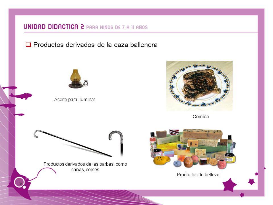 5 Productos derivados de la caza ballenera Aceite para iluminar Comida Productos de belleza Productos derivados de las barbas, como cañas, corsés
