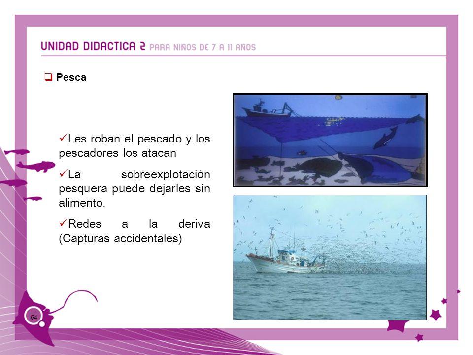 54 Pesca Les roban el pescado y los pescadores los atacan La sobreexplotaci ó n pesquera puede dejarles sin alimento. Redes a la deriva (Capturas acci