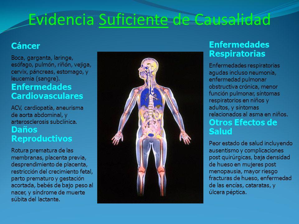 Evidencia Suficiente de Causalidad Enfermedades Cardiovasculares ACV, cardiopatía, aneurisma de aorta abdominal, y arterosclerosis subclínica. Daños R