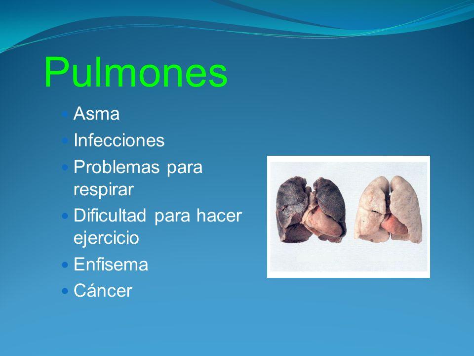 Pulmones Asma Infecciones Problemas para respirar Dificultad para hacer ejercicio Enfisema Cáncer