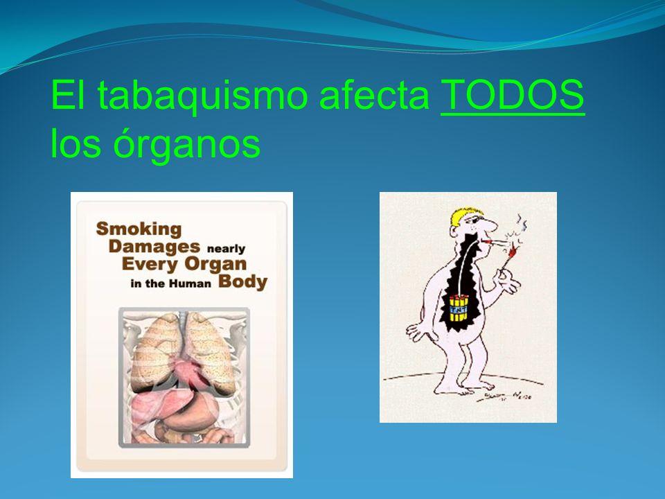 El tabaquismo afecta TODOS los órganos