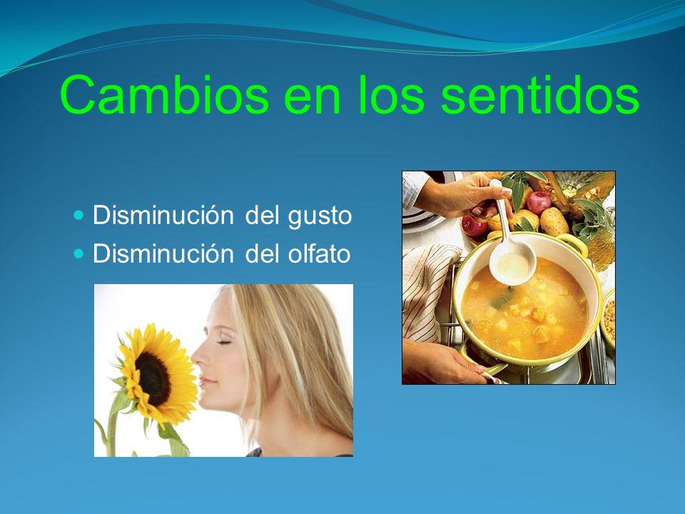 Cambios en los sentidos Disminución del gusto Disminución del olfato