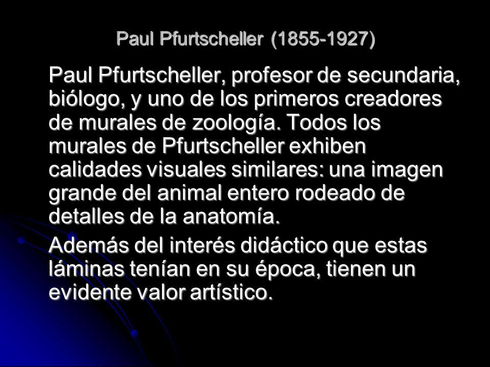 Paul Pfurtscheller (1855-1927) Paul Pfurtscheller, profesor de secundaria, biólogo, y uno de los primeros creadores de murales de zoología. Todos los
