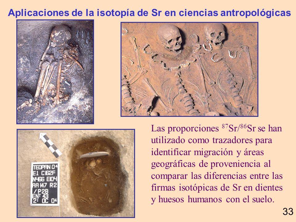 Carbonatos sobreyacientes a la brecha del impacto Chicxulub 32 Escobar, 2005, tesis Maestría