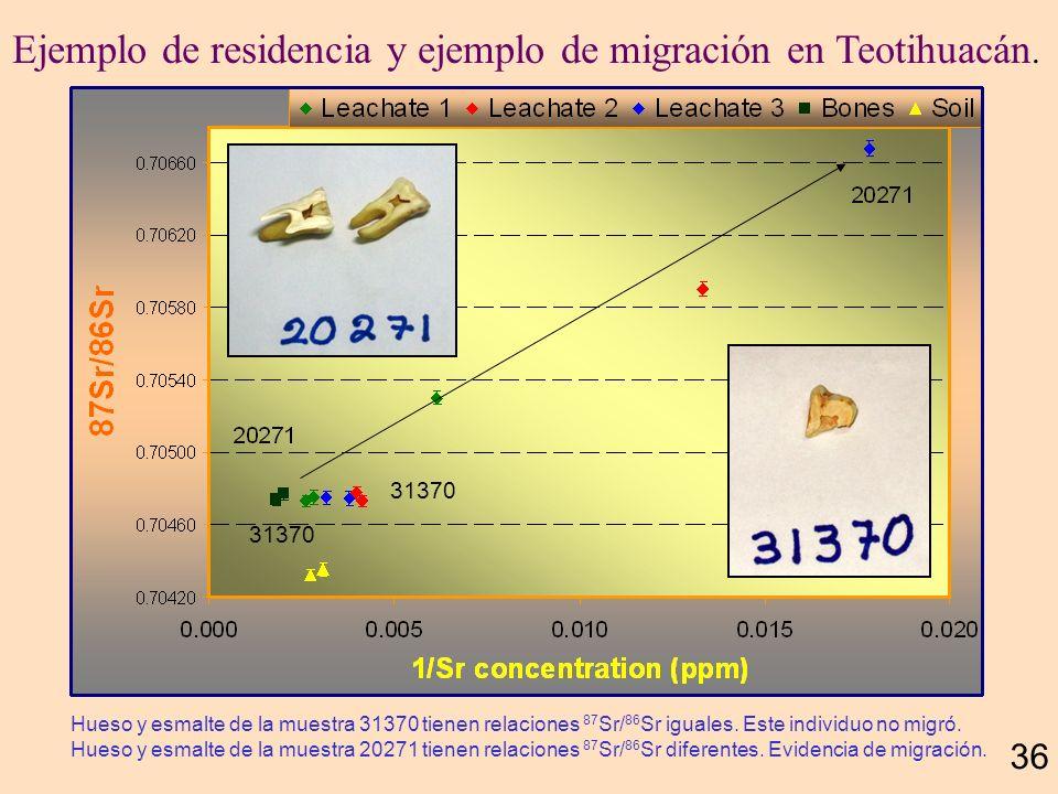 Dientes de Teotihuacán 35