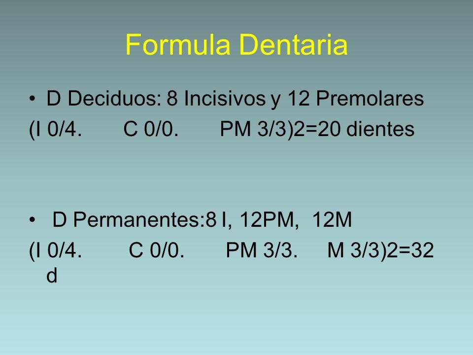 Formula Dentaria D Deciduos: 8 Incisivos y 12 Premolares (I 0/4. C 0/0. PM 3/3)2=20 dientes D Permanentes:8 I, 12PM, 12M (I 0/4. C 0/0. PM 3/3. M 3/3)