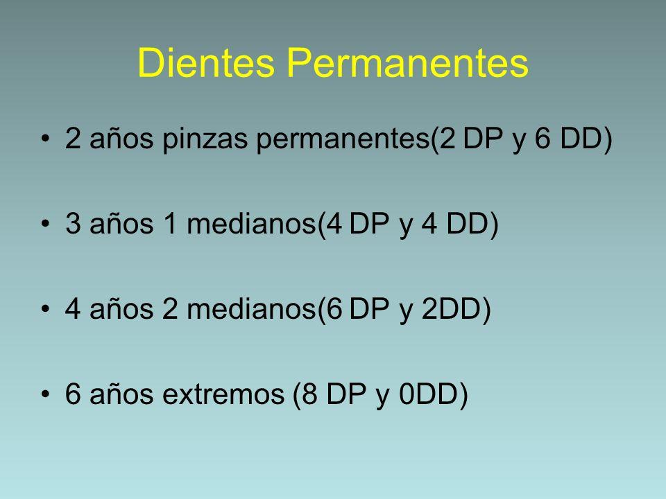 Dientes Permanentes 2 años pinzas permanentes(2 DP y 6 DD) 3 años 1 medianos(4 DP y 4 DD) 4 años 2 medianos(6 DP y 2DD) 6 años extremos (8 DP y 0DD)