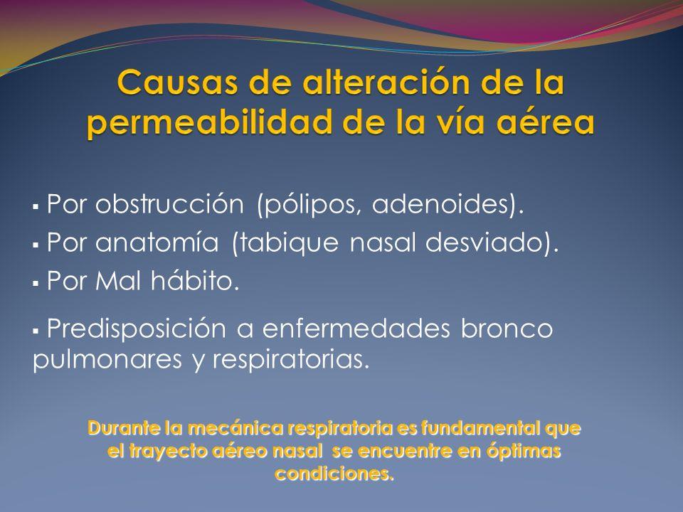 Por obstrucción (pólipos, adenoides).Por anatomía (tabique nasal desviado).