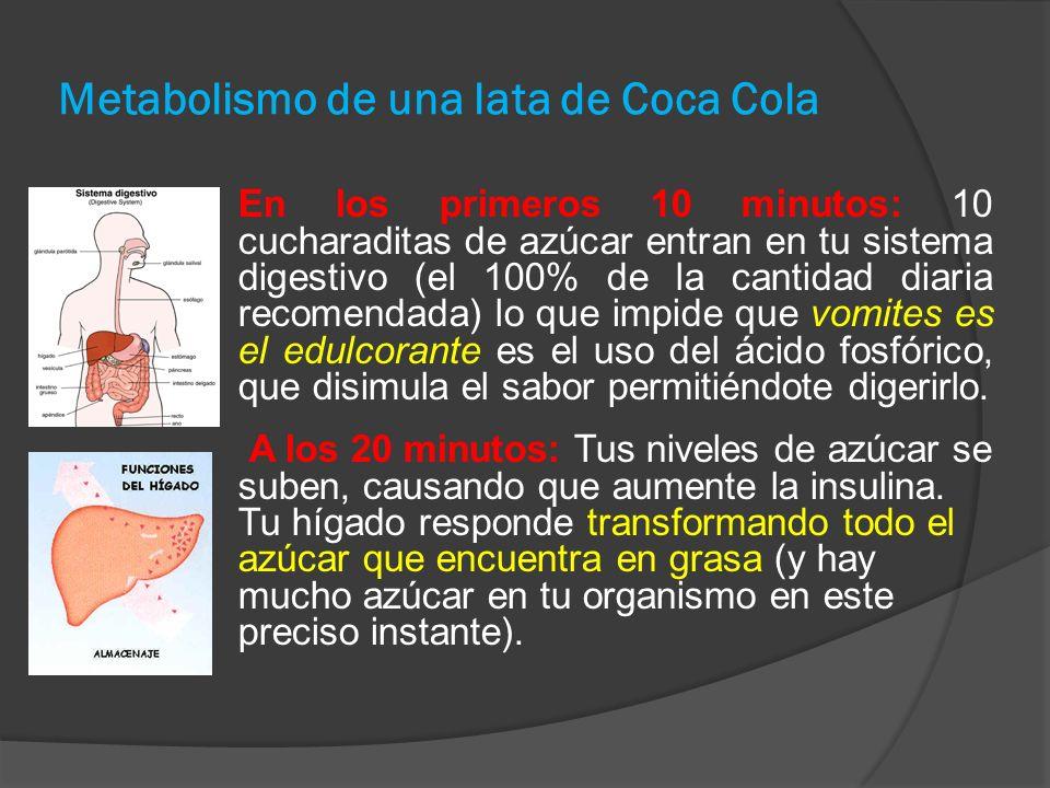Metabolismo de una lata de Coca Cola En los primeros 10 minutos: 10 cucharaditas de azúcar entran en tu sistema digestivo (el 100% de la cantidad diaria recomendada) lo que impide que vomites es el edulcorante es el uso del ácido fosfórico, que disimula el sabor permitiéndote digerirlo.