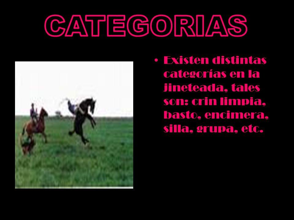 Existen distintas categorías en la jineteada, tales son: crin limpia, basto, encimera, silla, grupa, etc.