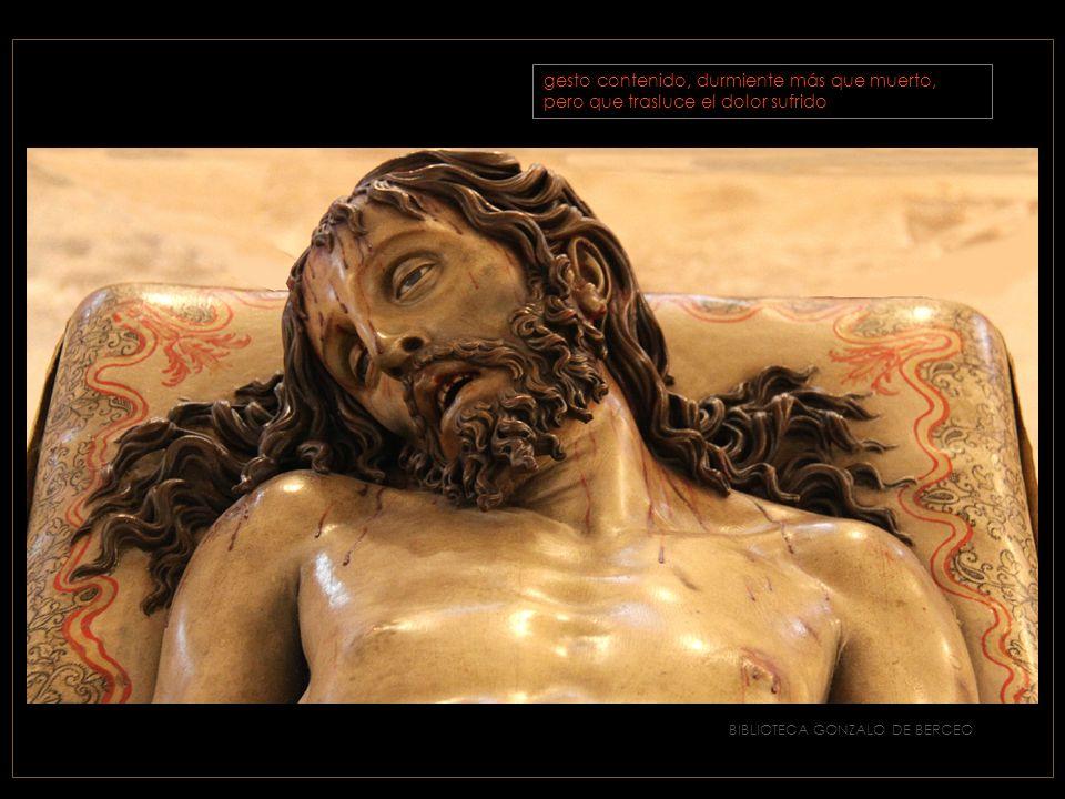 BIBLIOTECA GONZALO DE BERCEO El cabello perfectamente moldeado y resuelto en bucles, tendidos sobre la almohada, pero sin vida