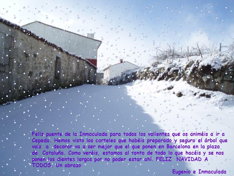 Os deseamos a todos que paséis unas muy felices fiestas navideñas, y que las doce uvas os recarguen de energía positiva para afrontar el nuevo año 2009 con optimismo y buenas vibraciones.