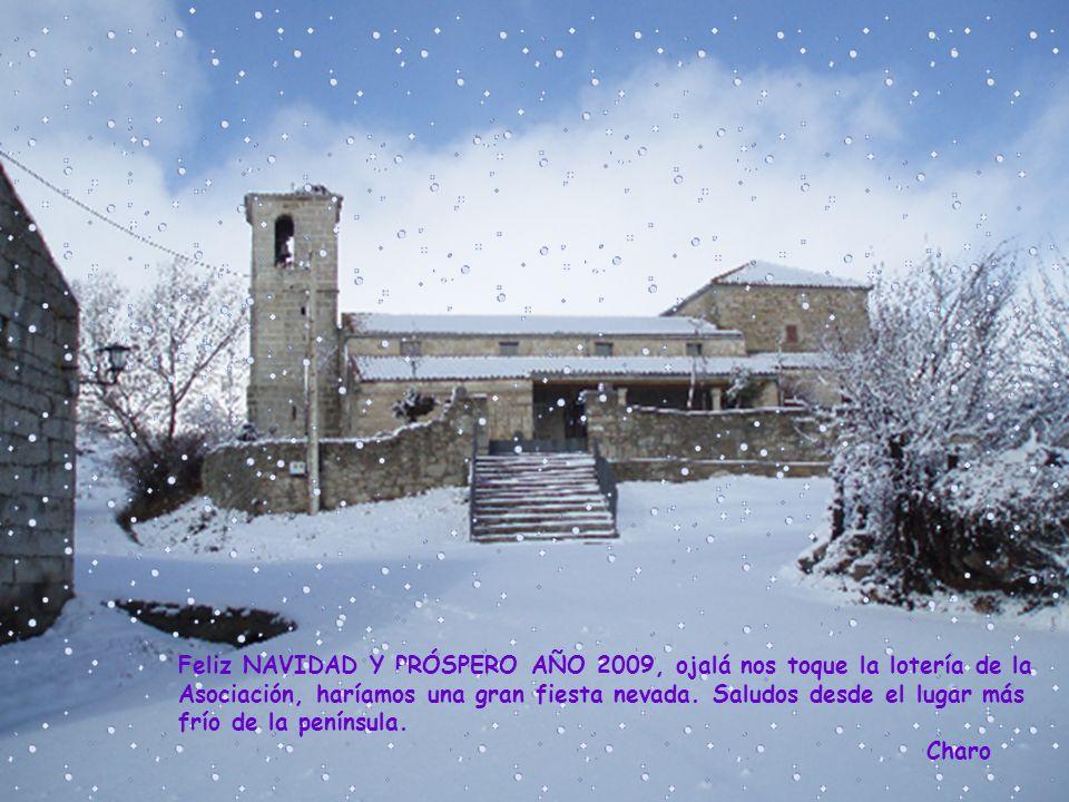 Feliz NAVIDAD Y PRÓSPERO AÑO 2009, ojalá nos toque la lotería de la Asociación, haríamos una gran fiesta nevada.