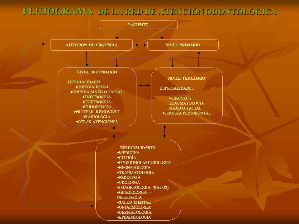 FLUJOGRAMA DE LA RED DE ATENCIÓN ODONTOLÓGICA PACIENTE ATENCION DE URGENCIANIVEL PRIMARIO NIVEL SECUNDARIO ESPECIALIDADES CIRUGIA BUCAL CIRUGIA MÁXILO FACIAL ENDODONCIA ORTODONCIA PERIODONCIA PROTESIS REMOVIVLE RADIOLOGIA OTRAS ATENCIONES NIVEL TERCIARIO ESPECIALIDADES CIRUGIA Y TRAUMATOLOGIA MAXILO FACIAL CIRUGIA PERIODONTAL ESPECIALIDADES MEDICINA CIRUGÍA OTORRINOLARINGOLOGIA NEONATOLOGIA TRAUMATOLOGIA PEDIATRIA UROLOGIA IMAGENOLOGIA (RAYOS) GINECOLOGIA – OBTETRICIA SALUD MENTAL OFTALMOLOGIA DERMATOLOGIA EPIDEMIOLOGIA