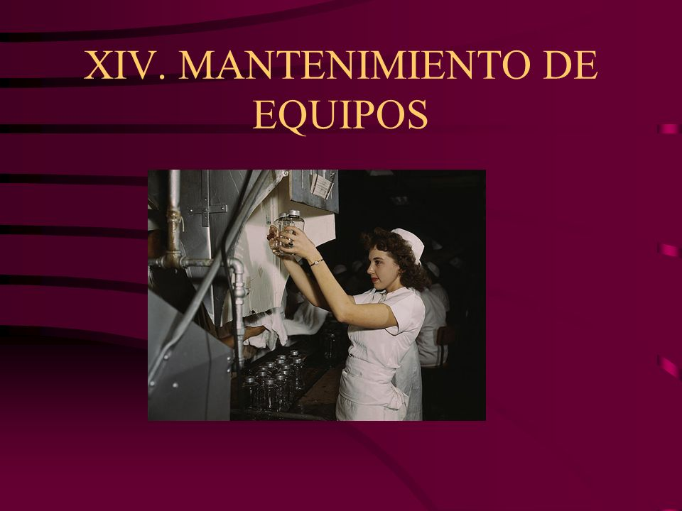 XIV. MANTENIMIENTO DE EQUIPOS