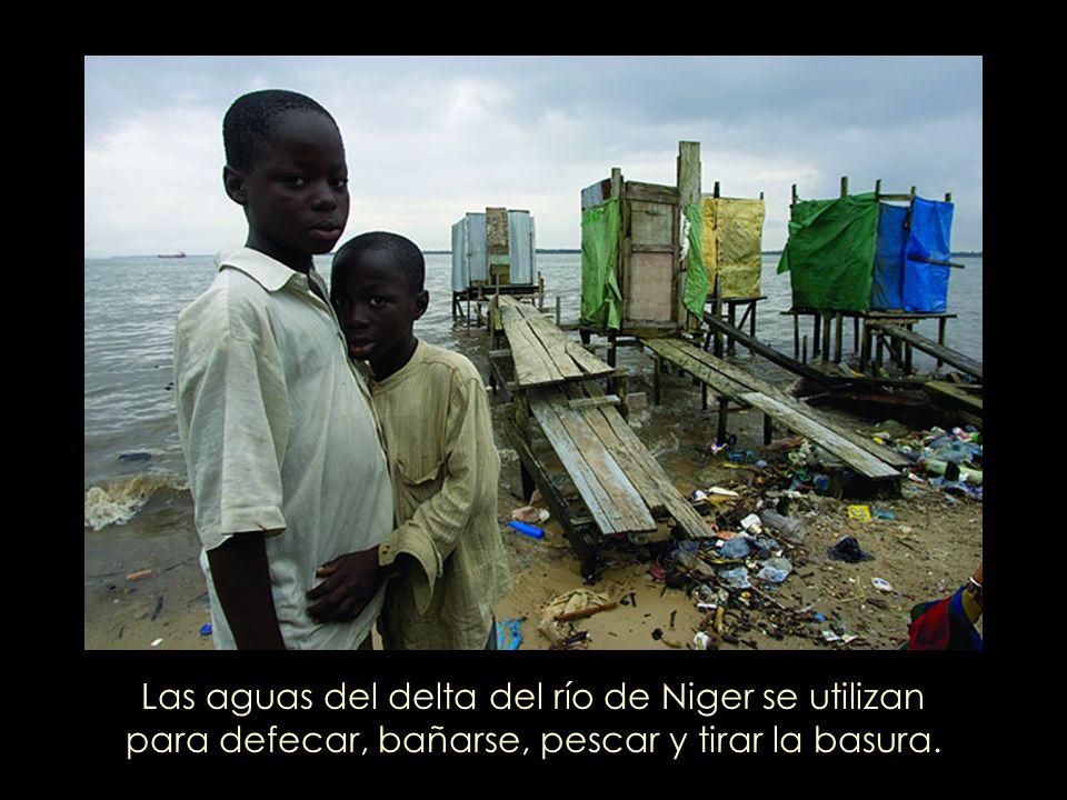 Las aguas del delta del río de Niger se utilizan para defecar, bañarse, pescar y tirar la basura.