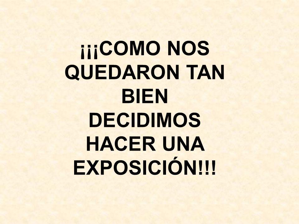 ¡¡¡COMO NOS QUEDARON TAN BIEN DECIDIMOS HACER UNA EXPOSICIÓN!!!