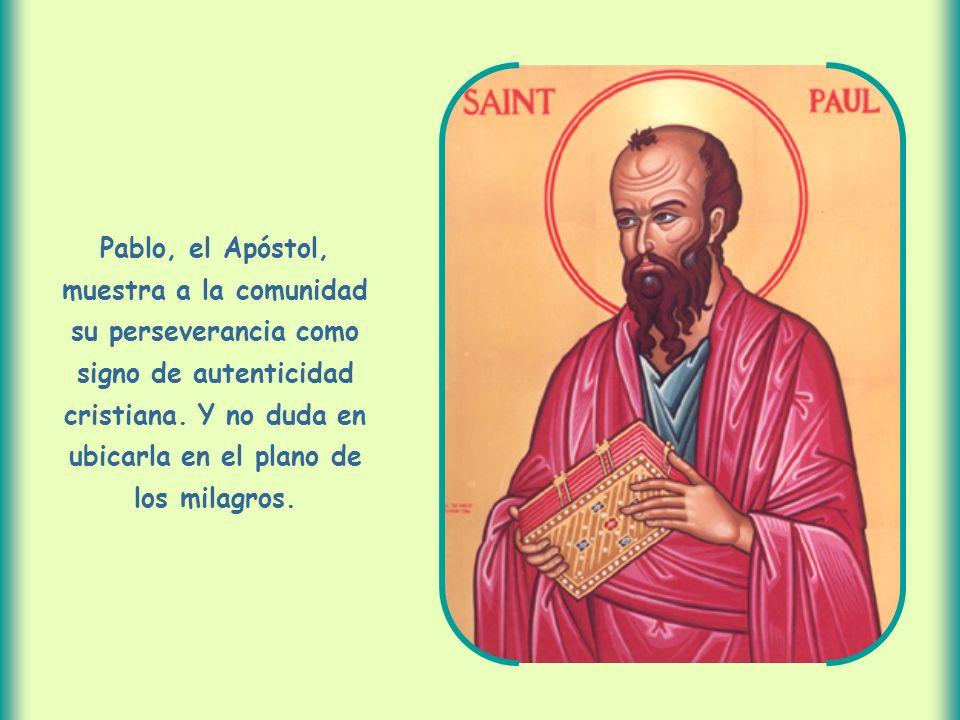 Pablo, el Apóstol, muestra a la comunidad su perseverancia como signo de autenticidad cristiana.