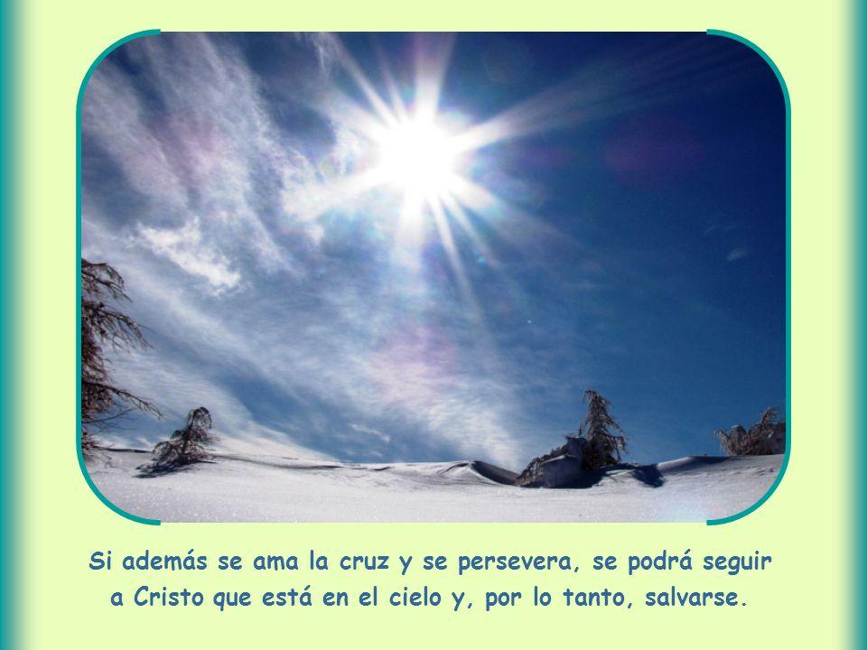 Si además se ama la cruz y se persevera, se podrá seguir a Cristo que está en el cielo y, por lo tanto, salvarse.