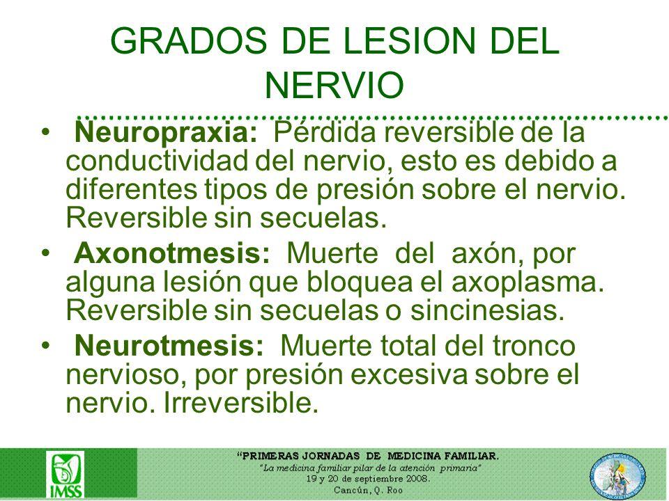 GRADOS DE LESION DEL NERVIO Neuropraxia: Pérdida reversible de la conductividad del nervio, esto es debido a diferentes tipos de presión sobre el nerv