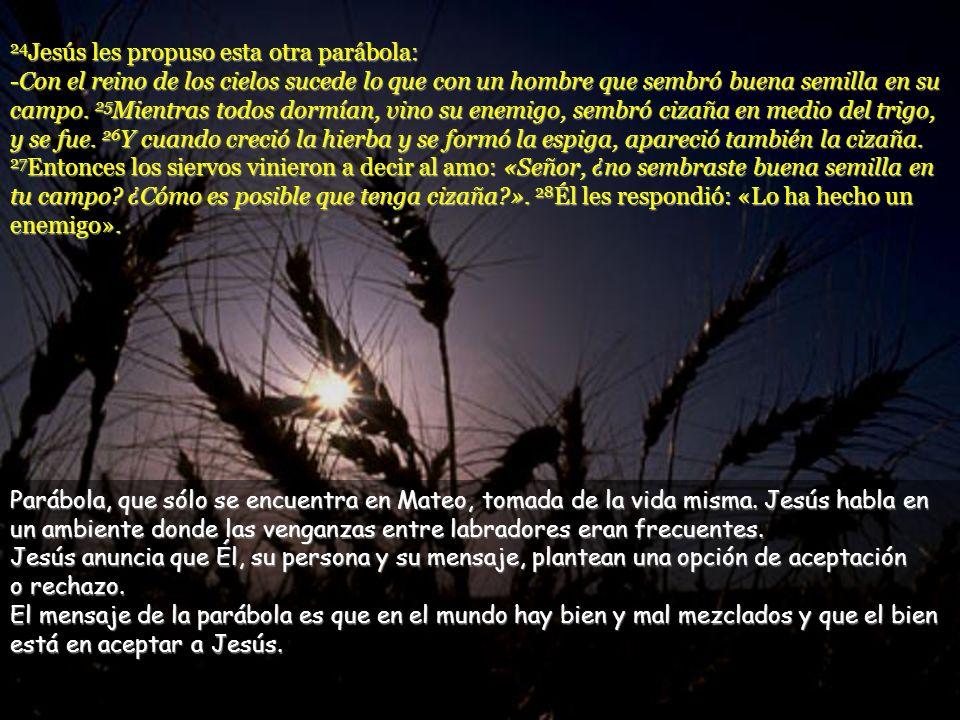 24 Jesús les propuso esta otra parábola: -Con el reino de los cielos sucede lo que con un hombre que sembró buena semilla en su campo.