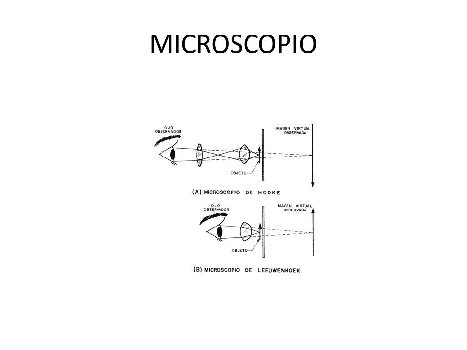 Microscopio Hay diversos microscopios ópticos para funciones especiales.