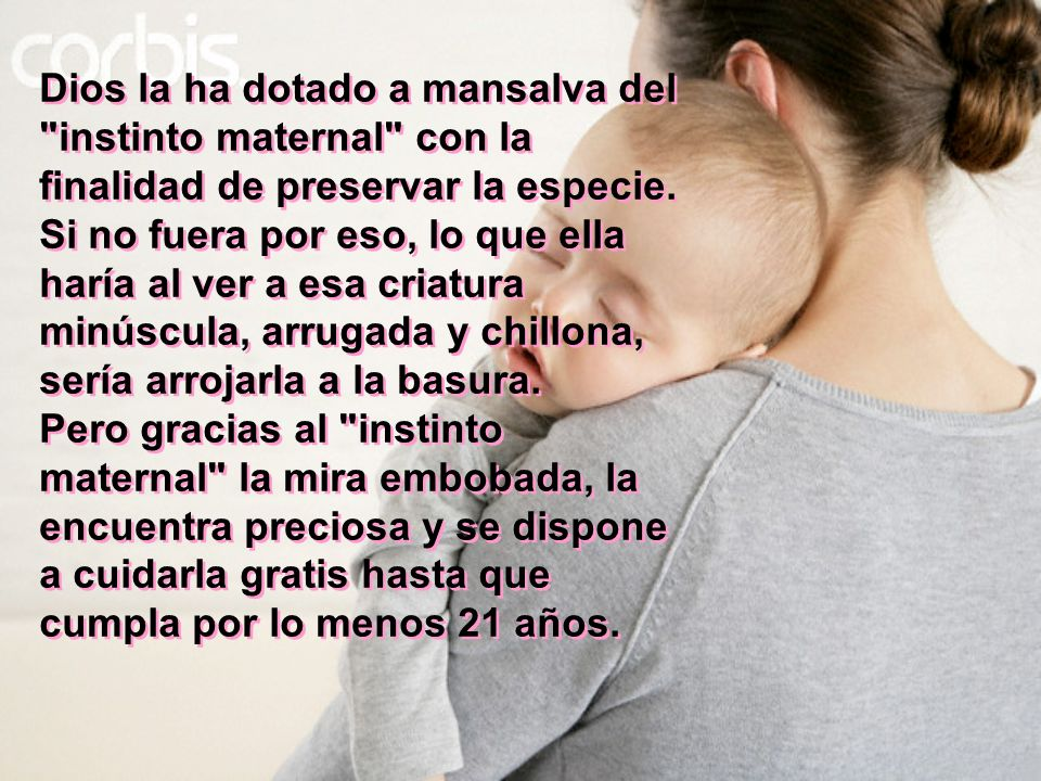 Dios la ha dotado a mansalva del instinto maternal con la finalidad de preservar la especie.
