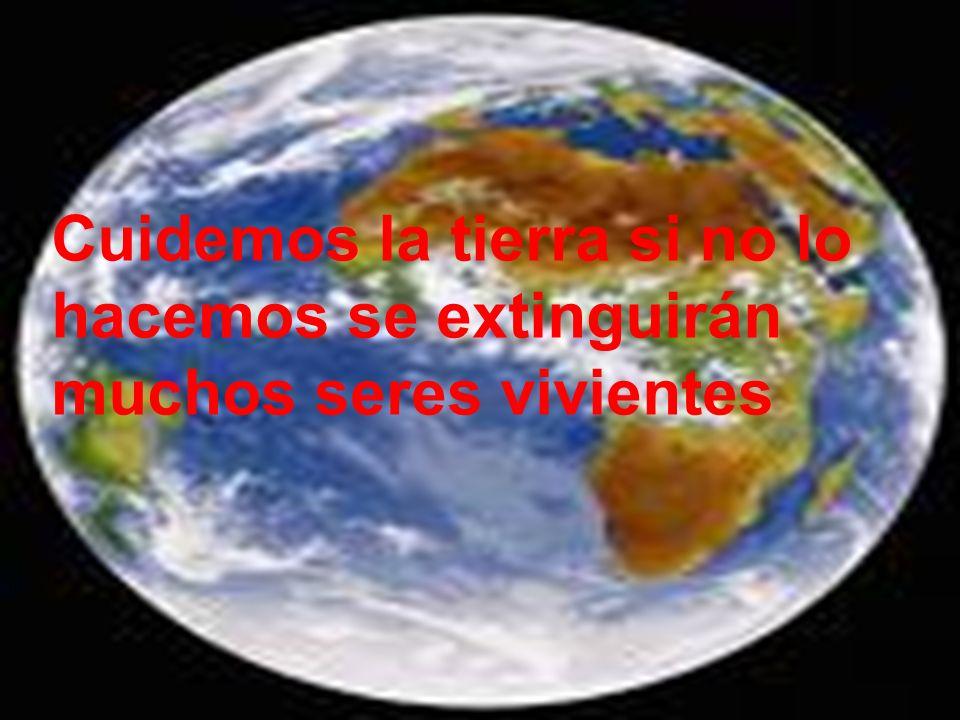 Cuidemos la tierra si no lo hacemos se extinguirán muchos seres vivientes