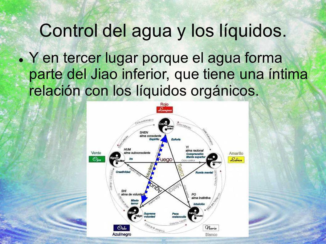 Control del agua y los líquidos. Y en tercer lugar porque el agua forma parte del Jiao inferior, que tiene una íntima relación con los líquidos orgáni