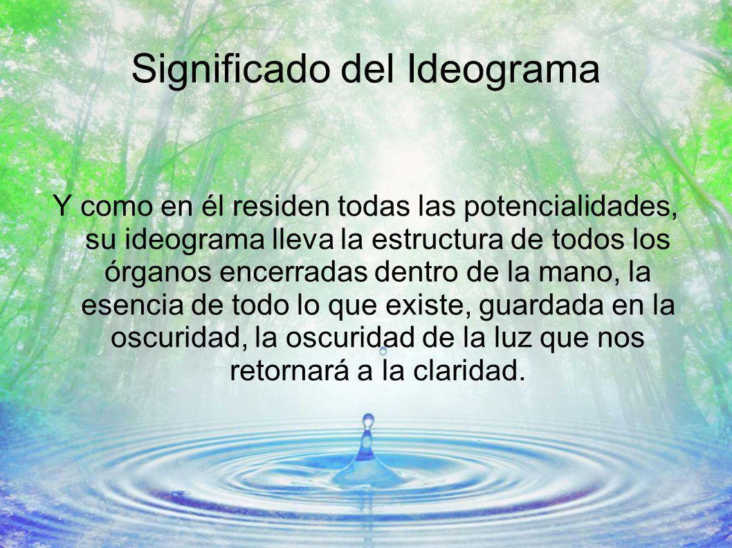 Significado del Ideograma Y como en él residen todas las potencialidades, su ideograma lleva la estructura de todos los órganos encerradas dentro de l