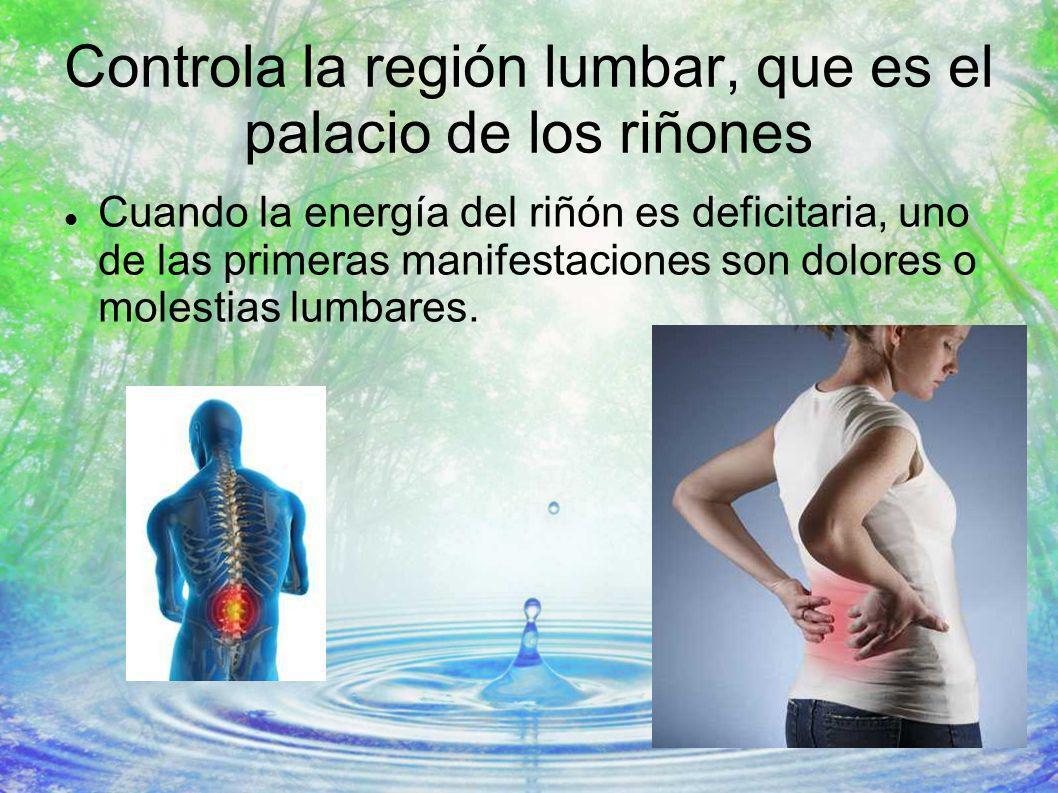 Controla la región lumbar, que es el palacio de los riñones Cuando la energía del riñón es deficitaria, uno de las primeras manifestaciones son dolore