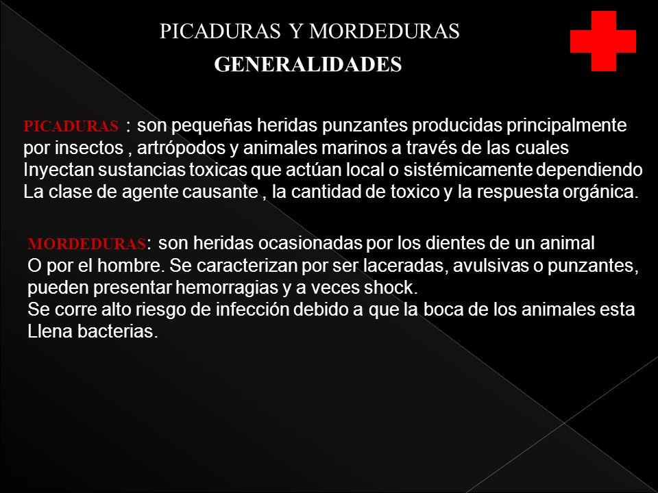PICADURAS Y MORDEDURAS GENERALIDADES PICADURAS : son pequeñas heridas punzantes producidas principalmente por insectos, artrópodos y animales marinos