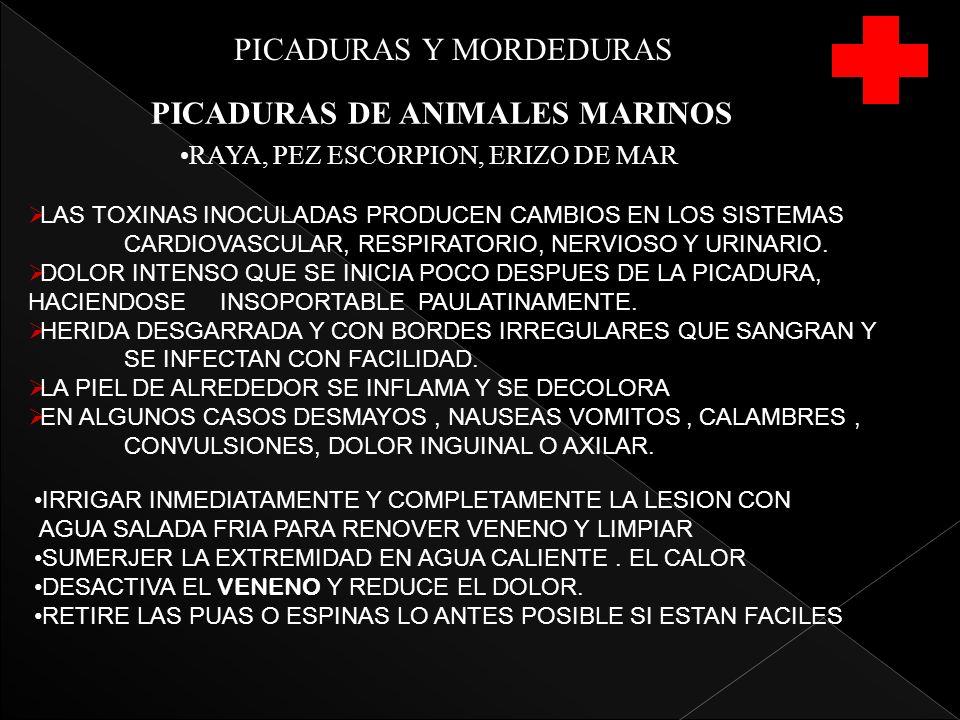 PICADURAS Y MORDEDURAS PICADURAS DE ANIMALES MARINOS RAYA, PEZ ESCORPION, ERIZO DE MAR LAS TOXINAS INOCULADAS PRODUCEN CAMBIOS EN LOS SISTEMAS CARDIOVASCULAR, RESPIRATORIO, NERVIOSO Y URINARIO.