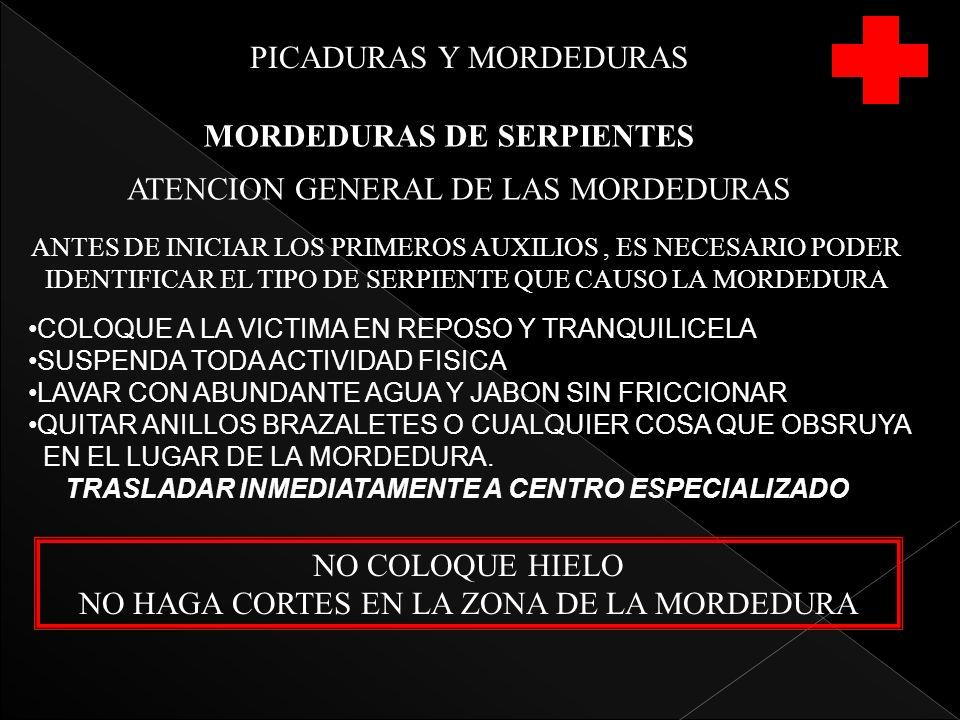 PICADURAS Y MORDEDURAS MORDEDURAS DE SERPIENTES ATENCION GENERAL DE LAS MORDEDURAS ANTES DE INICIAR LOS PRIMEROS AUXILIOS, ES NECESARIO PODER IDENTIFICAR EL TIPO DE SERPIENTE QUE CAUSO LA MORDEDURA COLOQUE A LA VICTIMA EN REPOSO Y TRANQUILICELA SUSPENDA TODA ACTIVIDAD FISICA LAVAR CON ABUNDANTE AGUA Y JABON SIN FRICCIONAR QUITAR ANILLOS BRAZALETES O CUALQUIER COSA QUE OBSRUYA EN EL LUGAR DE LA MORDEDURA.