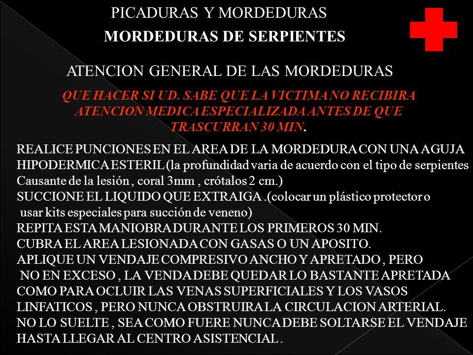PICADURAS Y MORDEDURAS MORDEDURAS DE SERPIENTES ATENCION GENERAL DE LAS MORDEDURAS QUE HACER SI UD. SABE QUE LA VICTIMA NO RECIBIRA ATENCION MEDICA ES