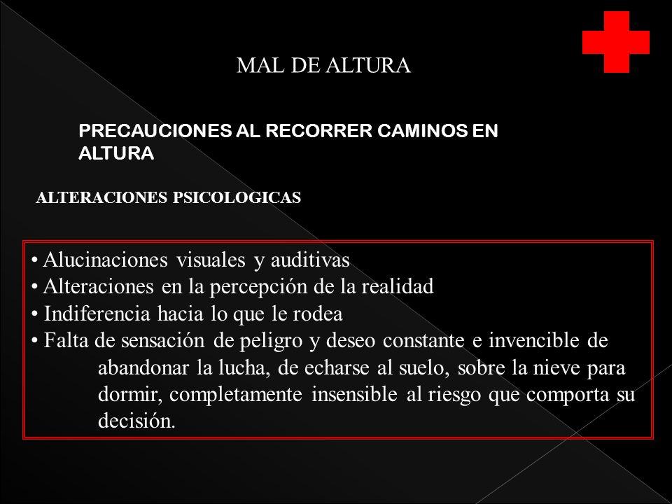 MAL DE ALTURA PRECAUCIONES AL RECORRER CAMINOS EN ALTURA Alucinaciones visuales y auditivas Alteraciones en la percepción de la realidad Indiferencia