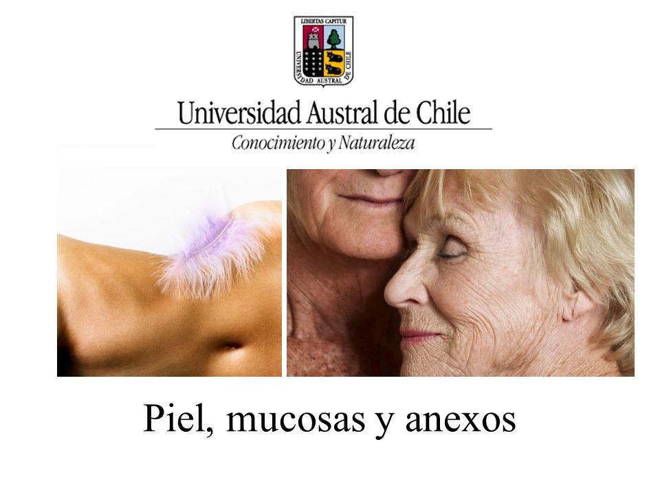 SOBRE LA NECESIDAD Para Astorquiza (1970), la necesidad de las personas de mantener íntegras la piel y las mucosas está mediada por su instinto de conservación de la vida, puesto que forma parte de las necesidades biológicas.