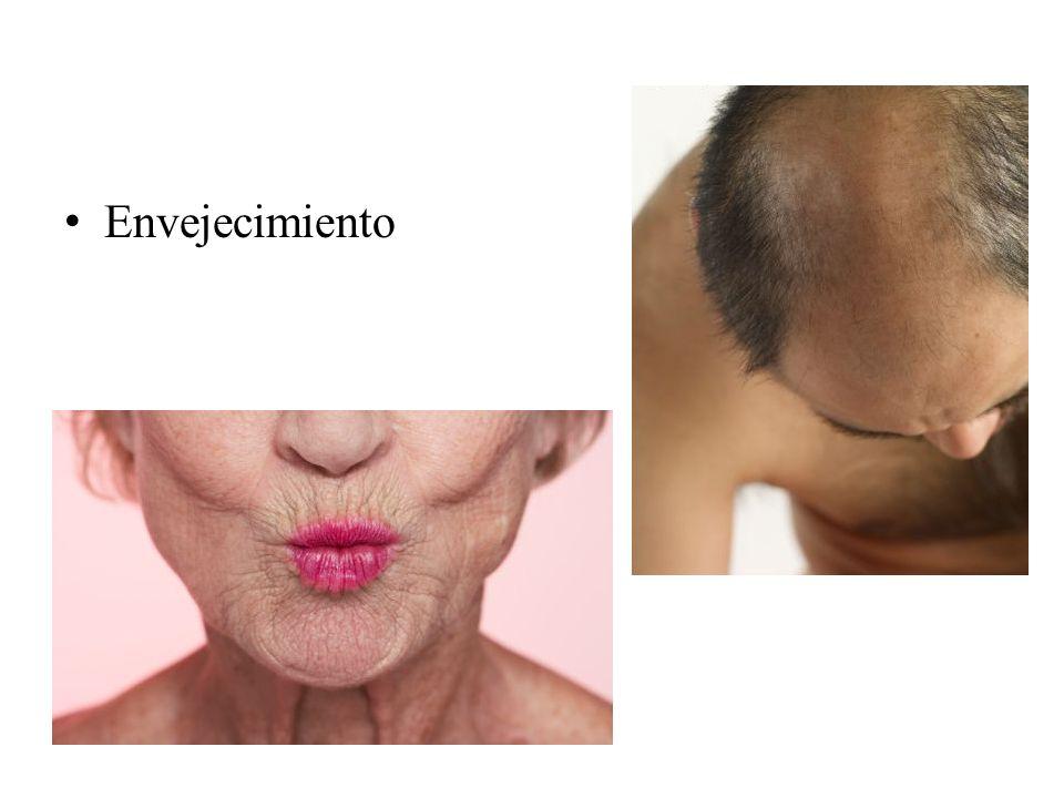 Gravidez Ambas fotografías son gentileza de la Prof. Patricia Triviño