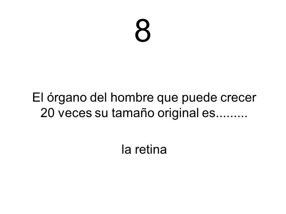 8 El órgano del hombre que puede crecer 20 veces su tamaño original es......... la retina