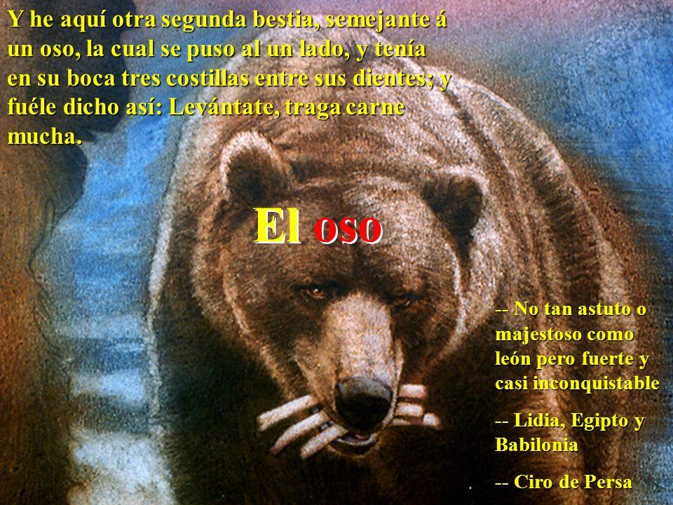 El oso Y he aquí otra segunda bestia, semejante á un oso, la cual se puso al un lado, y tenía en su boca tres costillas entre sus dientes; y fuéle dic