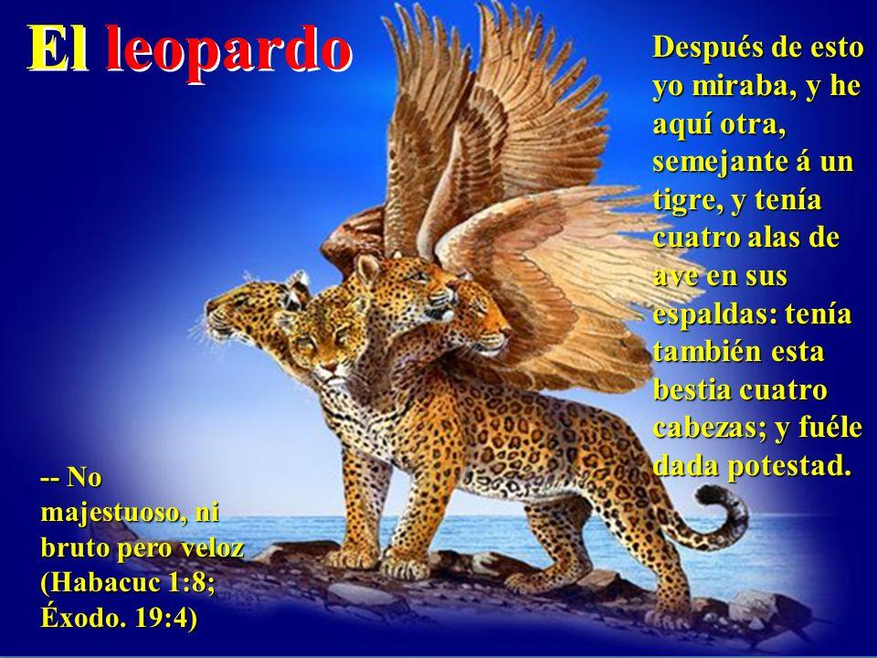 El leopardo Después de esto yo miraba, y he aquí otra, semejante á un tigre, y tenía cuatro alas de ave en sus espaldas: tenía también esta bestia cua
