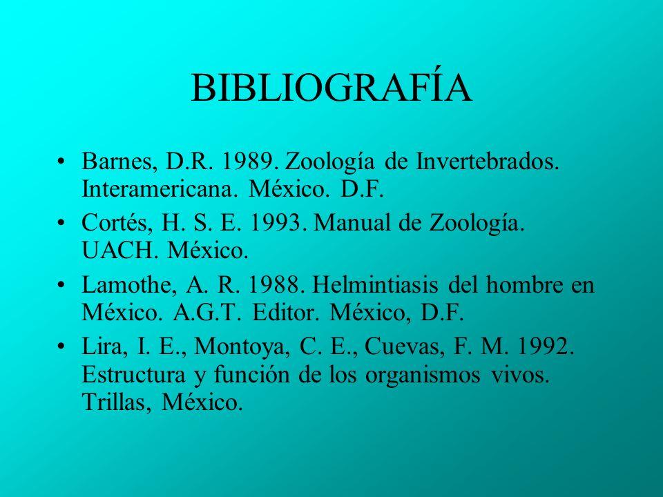 BIBLIOGRAFÍA Barnes, D.R.1989. Zoología de Invertebrados.