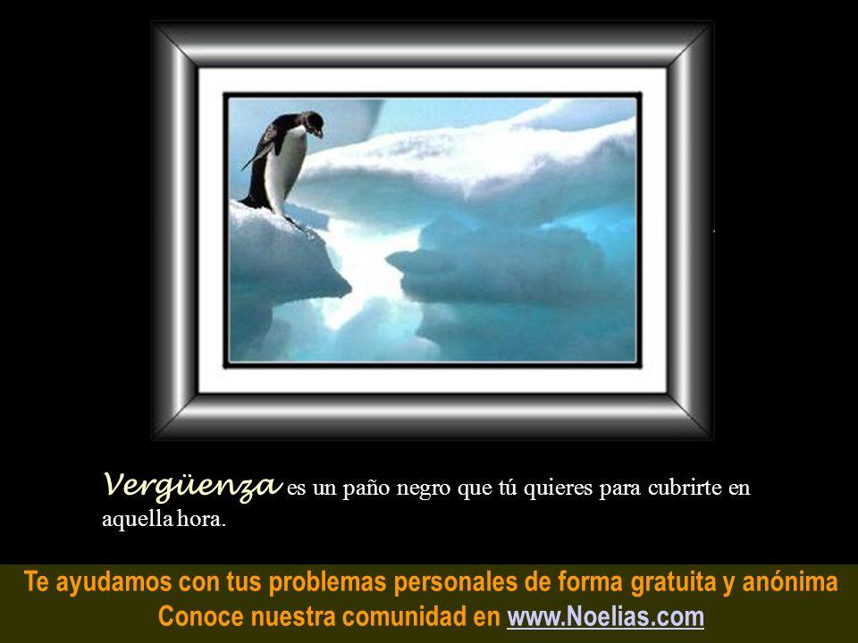 Te ayudamos con tus problemas personales de forma gratuita y anónima Conoce nuestra comunidad en www.Noelias.comwww.Noelias.com Presentimiento es cuan