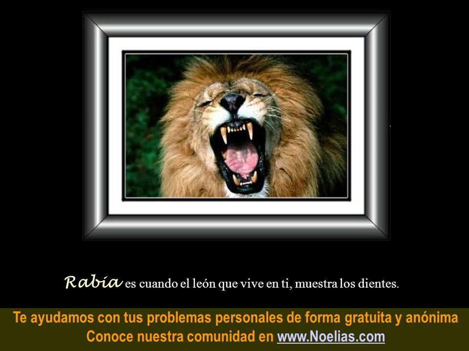 Te ayudamos con tus problemas personales de forma gratuita y anónima Conoce nuestra comunidad en www.Noelias.comwww.Noelias.com Sentimiento es la leng