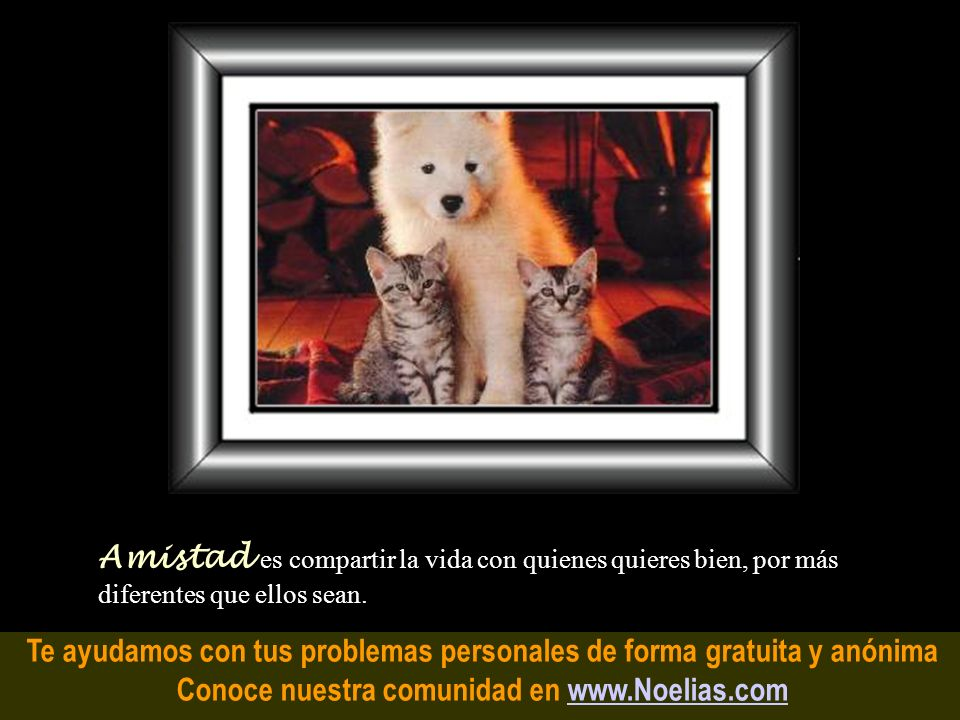 Te ayudamos con tus problemas personales de forma gratuita y anónima Conoce nuestra comunidad en www.Noelias.comwww.Noelias.com Felicidad es un moment