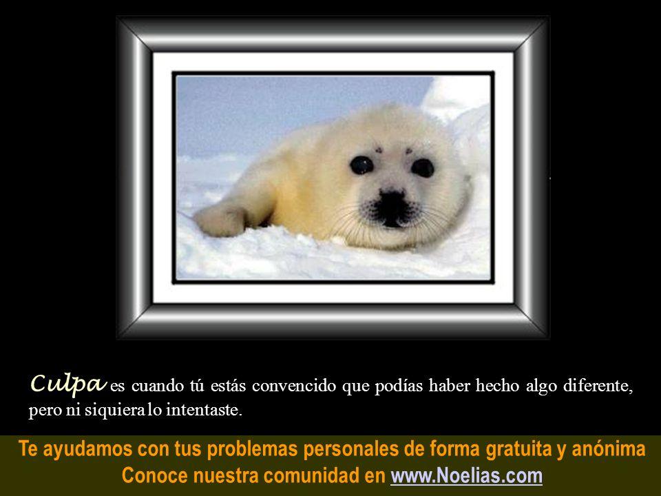Te ayudamos con tus problemas personales de forma gratuita y anónima Conoce nuestra comunidad en www.Noelias.comwww.Noelias.com Amistad es compartir l
