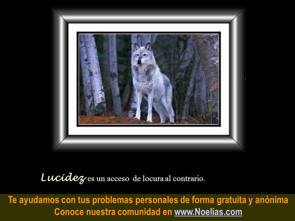 Te ayudamos con tus problemas personales de forma gratuita y anónima Conoce nuestra comunidad en www.Noelias.comwww.Noelias.com Culpa es cuando tú est