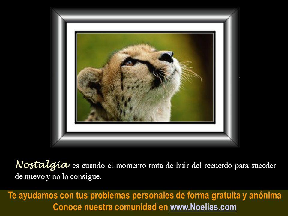 Te ayudamos con tus problemas personales de forma gratuita y anónima Conoce nuestra comunidad en www.Noelias.comwww.Noelias.com Sentimientos